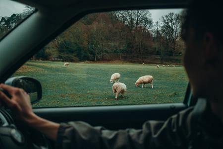 Discovering Exmoor