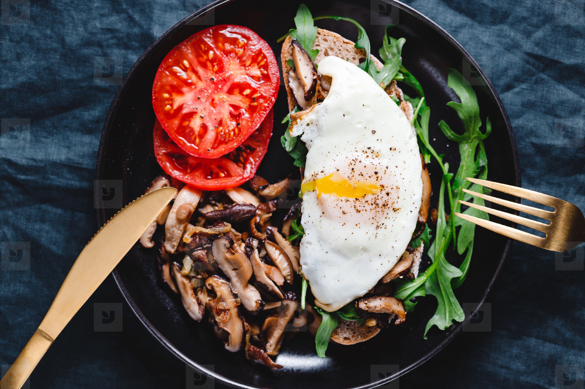 Top view of sandwich with fresh arugula  fried shiitake mushroom  shallot onion  egg served with tomatoes