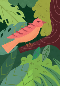 Forest Animal 02