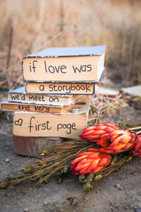 If love was a story Book