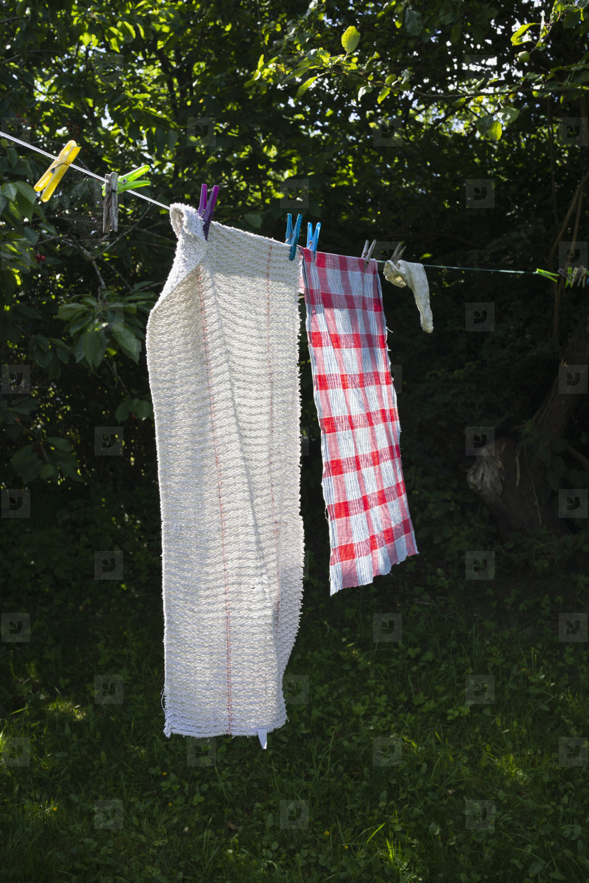 Towels drying on sunny clothesline in backyard