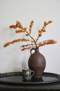 Orange Sea Buckthorn plant in vase on tray