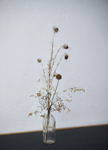 Spiky plant stems in glass bottle vase