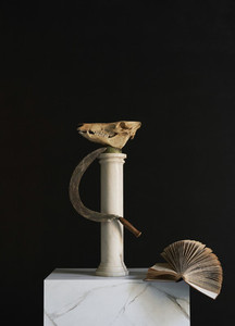 Animal skull  scythe and book on pedestal