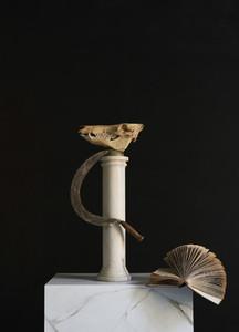 Animal skull scythe and book on pedestal