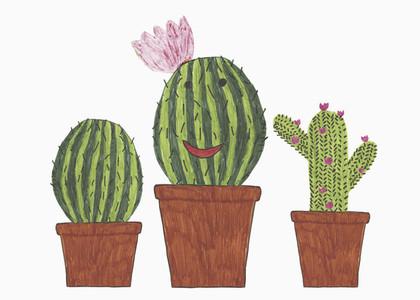 Illustration of anthropomorphic cacti in flowerpot