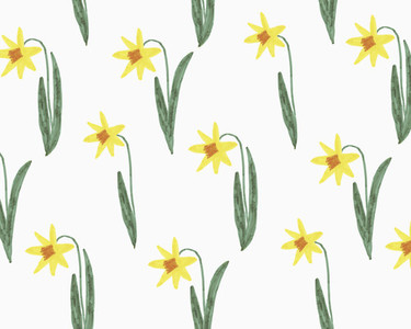 Illustration of yellow narcissus on white background