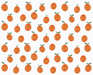 Illustration of oranges on white background