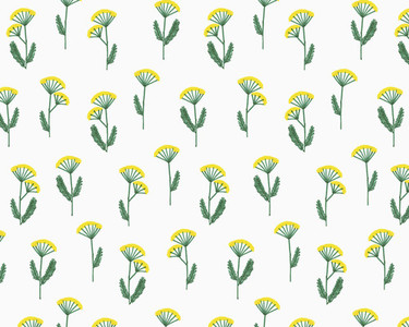 Illustration of yarrow flowers on white background