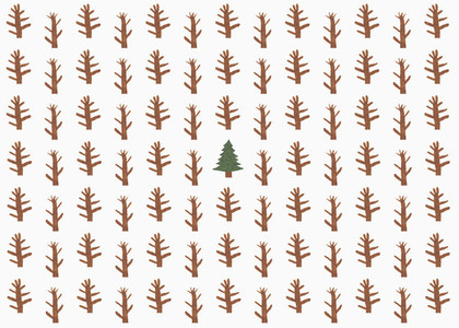 Childs drawing of coniferous tree surrounded by saplings