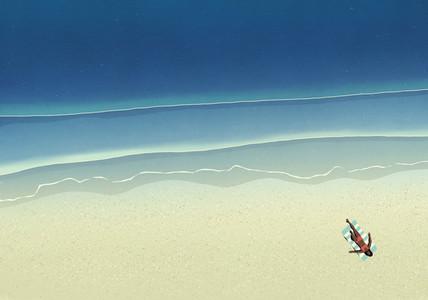 Aerial view woman sunbathing on sunny ocean beach