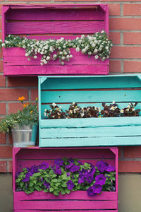 Bright colored wooden boxes with flowers  European exterior design