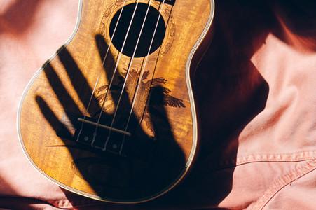 Hand shadow on a ukulele