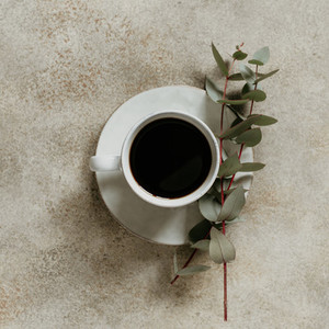Cup of black coffee and eucalyptus branches on a textured beige background