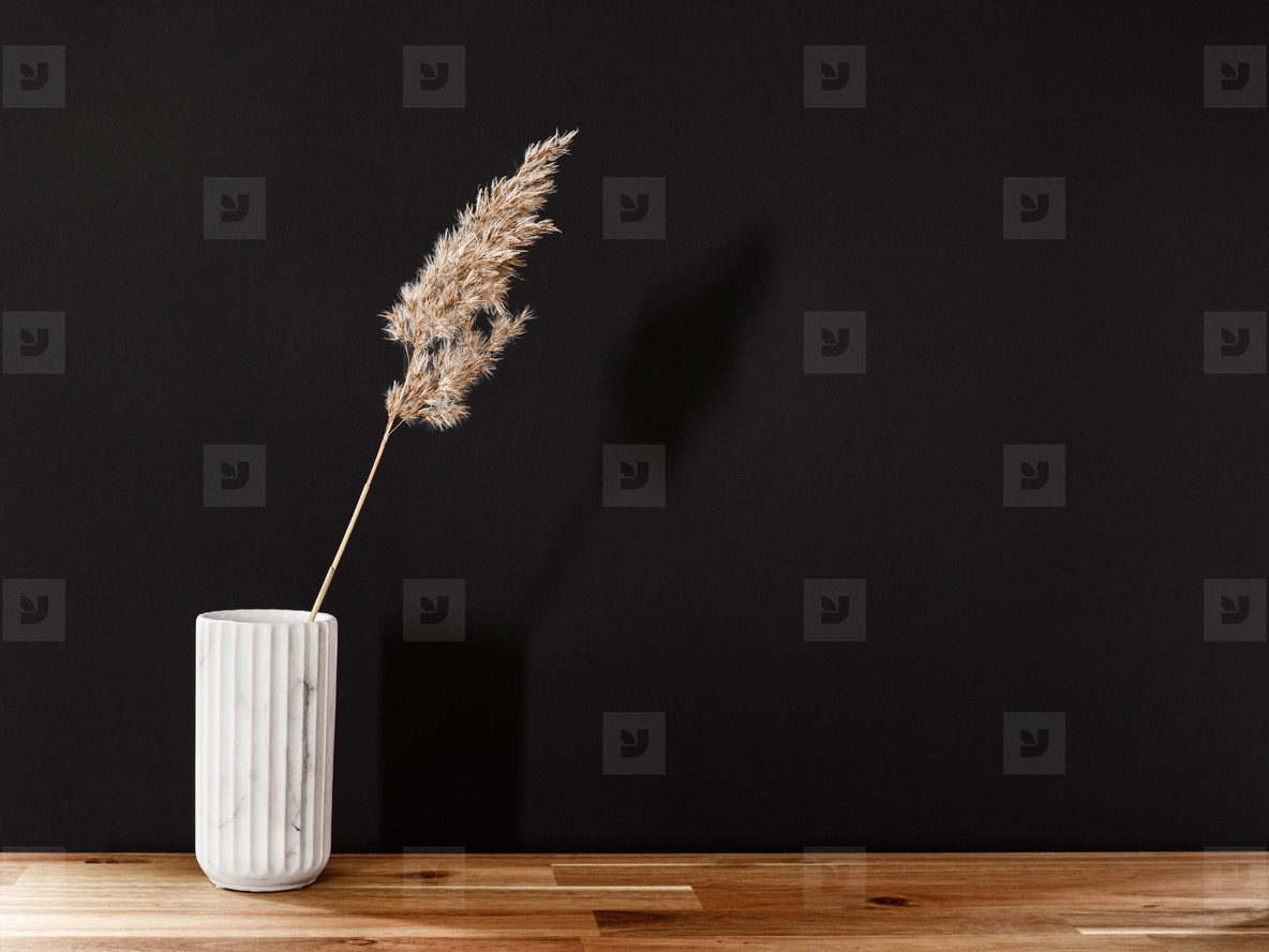 Reed in a white marble vase on a wooden table against black wall  Interior minimal background  copy space