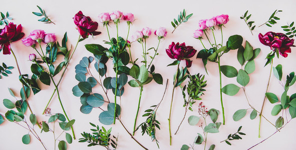 Flat lay of purple peonies  pink roses and green branches