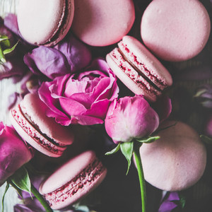 Sweet macarons and rose flowers buds and petals square crop