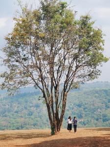 Two women standing under tree