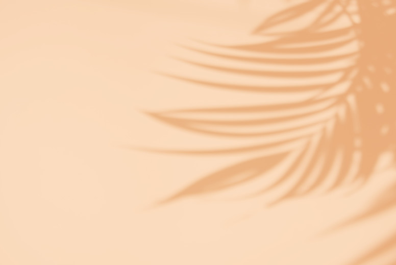 Tropical palm leaves natural shadow overlay on orange texture ba