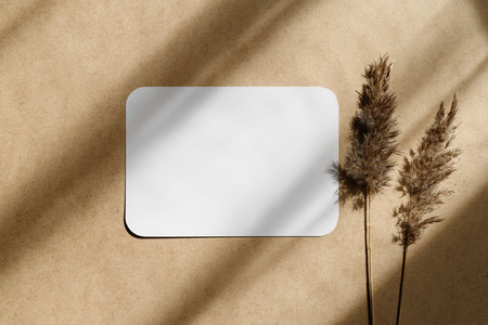 Top view of blank paper sheet on a beige kraft background with dry grass  Mockup for business template  copy space