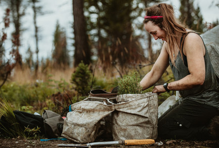 Female forest worker working on sustainable reforestation