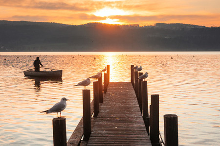 Greifensee  Switzerland