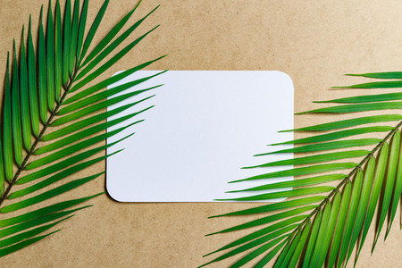 Top view of blank paper sheet on a beige kraft background with palm leaf  Tropic mockup for business template  copy space