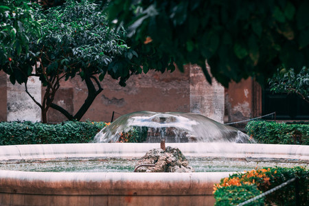 The small fountain in the garden in Rome