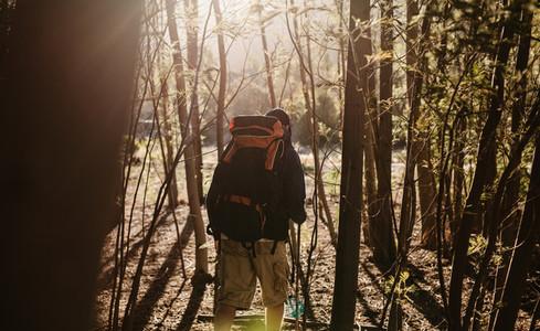 Hiking through woods