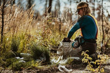 Tree planter working on reforestation