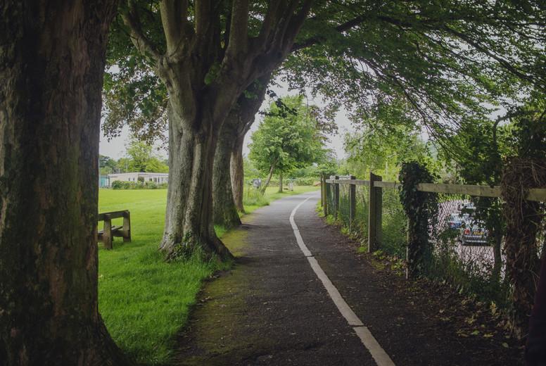 A walk in nature