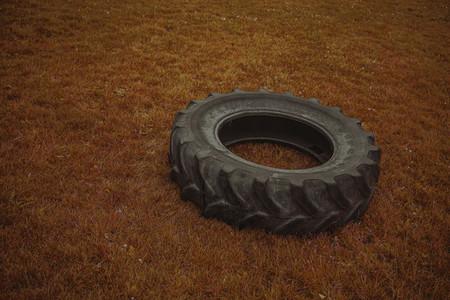 Wheel on the grass