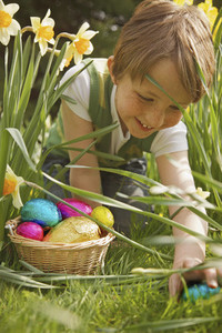 Smiling boy finding Easter egg candy among daffodils