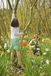 Brother and sister enjoying Easter egg hunt among trees and daffodils