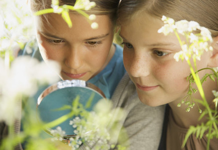 Close up curious girls with magnifying glass examining flower