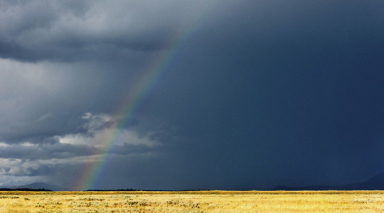 Rainbow in stormy sky over sunny rural field