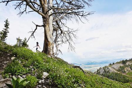 Girl hiking uphill along tree