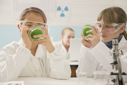 Junior high school girl students with petri dishes in science laboratory