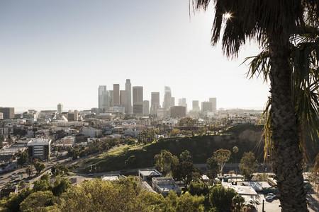 Sunny cityscape Los Angeles
