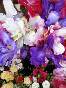 Vibrant multicolor iris and roses