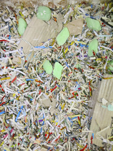 Multicolor shredded confetti paper