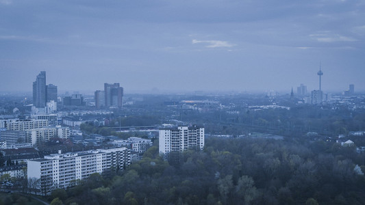 Cologne cityscape and treetops