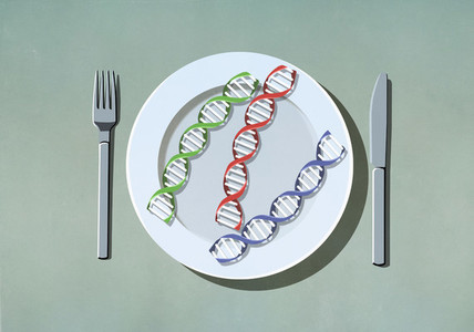 Double helix strands on dinner plate