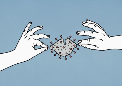 Hands dismantling coronavirus pathogen