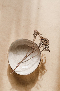 Minimalist ceramic bowl with dry plant over kraft paper background  Copy space  flat lay