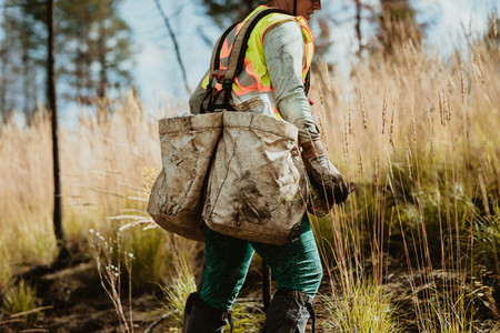 Female working in forestry