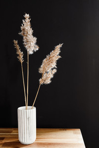 Reed in a white marble vase on a wooden table against the black wall  Interior minimal background
