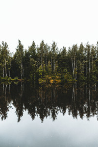 Nature landscape photography  Forest and river with reflections on a cloudy day