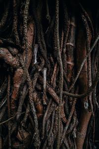 Natural Image Textures 14