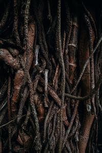 Natural Image Textures 15